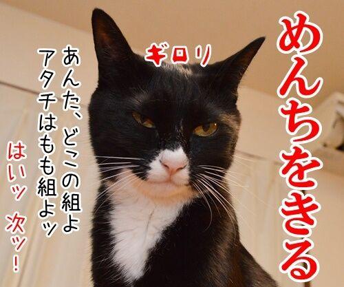 国語の授業 其の二 猫の写真で4コマ漫画 2コマ目ッ