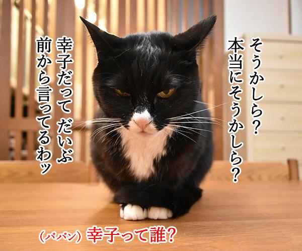 またたび LOVE 猫の写真で4コマ漫画 3コマ目ッ