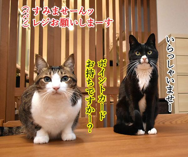 あずだいマートでお買い物 其の五 猫の写真で4コマ漫画 1コマ目ッ