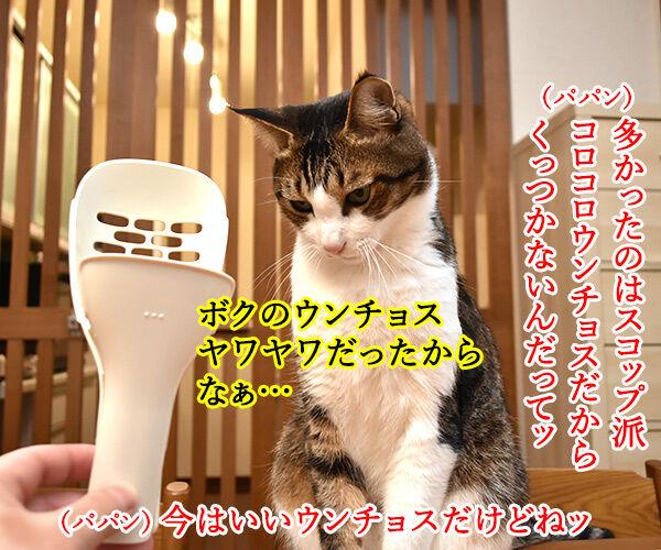 ウンチョスの片づけ方にたくさんコメントいただいたのッ 猫の写真で4コマ漫画 2コマ目ッ