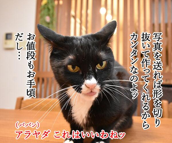 かわいいキーホルダーが欲しいのよッ 猫の写真で4コマ漫画 2コマ目ッ