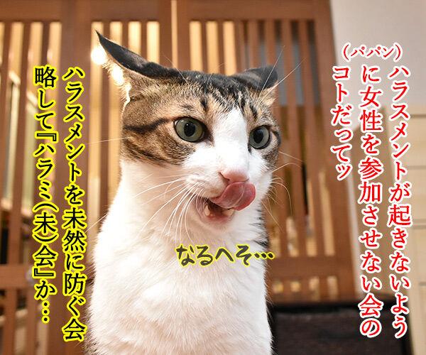 ハラミ会って美味しいのー? 猫の写真で4コマ漫画 2コマ目ッ