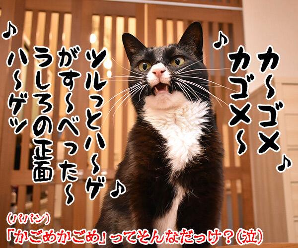 ケチャップはデルモンテ?カゴメ?それともハインツ? 猫の写真で4コマ漫画 4コマ目ッ