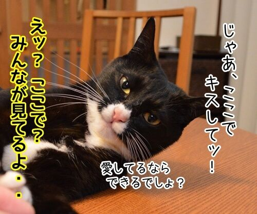 今すぐKiss me 猫の写真で4コマ漫画 2コマ目ッ