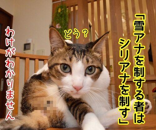 国語の授業 其の一 猫の写真で4コマ漫画 2コマ目ッ