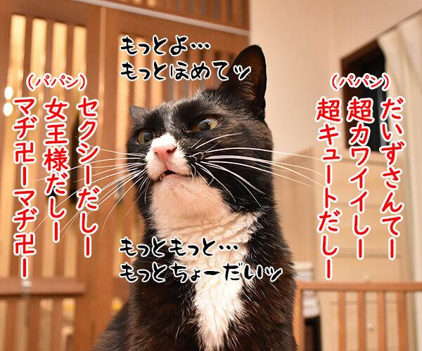 アタチ、ほめられるとのびるタイプなの 猫の写真で4コマ漫画 2コマ目ッ