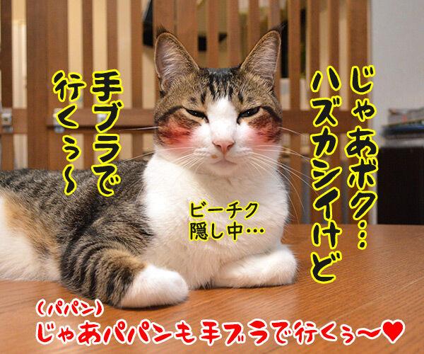 期日前投票に行ってちょーだいッ 猫の写真で4コマ漫画 4コマ目ッ