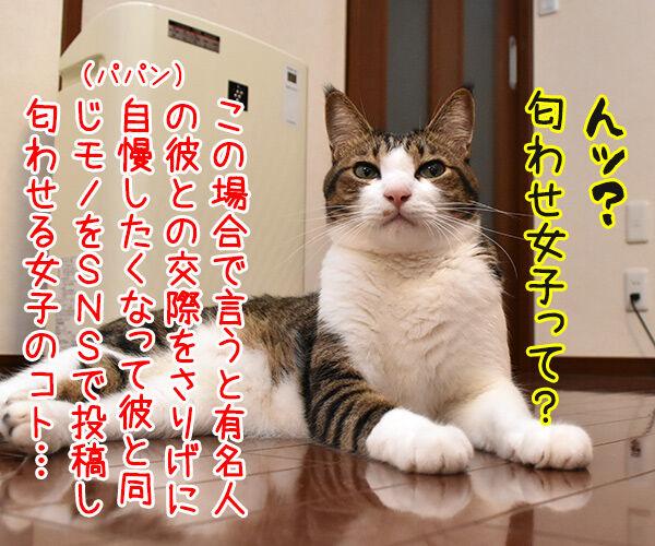 イケメン俳優の竹内涼真さんが匂わせで熱愛発覚なんですってッ 猫の写真で4コマ漫画 2コマ目ッ
