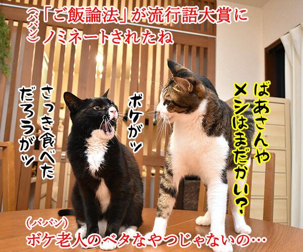 流行語大賞 ノミネート語 『ご飯論法』 猫の写真で4コマ漫画 1コマ目ッ