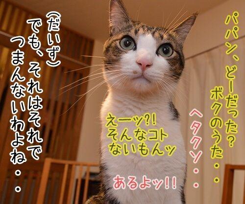 ひとりっこ 猫の写真で4コマ漫画 4コマ目ッ