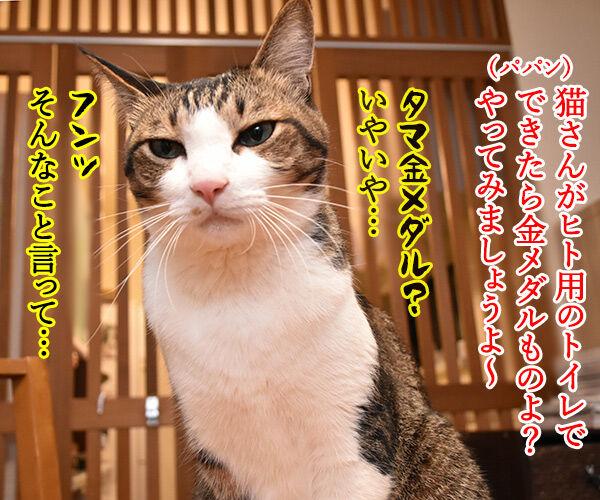 ヒト用のトイレを使えるようにってみない? 猫の写真で4コマ漫画 3コマ目ッ