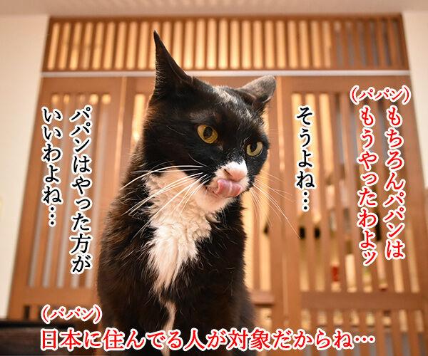 国勢調査は10月7日までなのよッ 猫の写真で4コマ漫画 2コマ目ッ