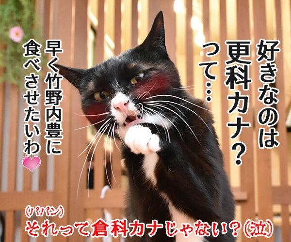 そば職人にアタチなるッ 猫の写真で4コマ漫画 4コマ目ッ