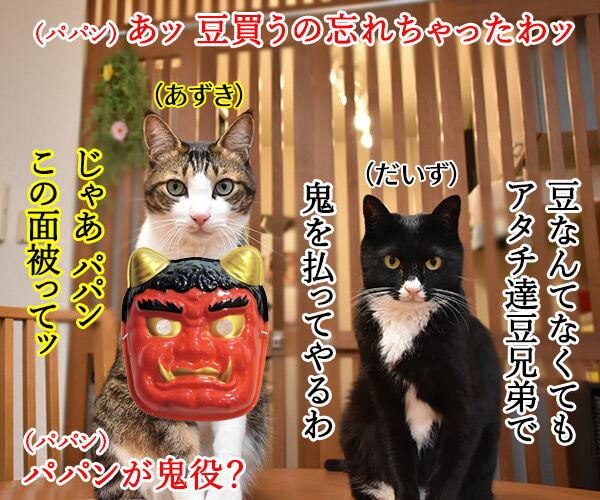 節分はアタチ達 豆兄弟にまかせてちょうだいッ 猫の写真で4コマ漫画 1コマ目ッ