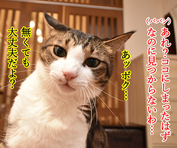 カプセルトイ『ねこのかぶりもの』の写真集が出たんですってッ 猫の写真で4コマ漫画 3コマ目ッ