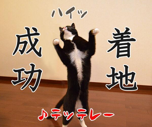 海外旅行でバンジージャンプ 猫の写真で4コマ漫画 5コマ目ッ