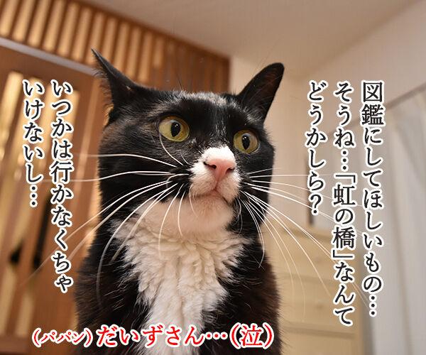 小学館の図鑑NEOメーカーで欲しい図鑑を作るのよッ 猫の写真で4コマ漫画 2コマ目ッ