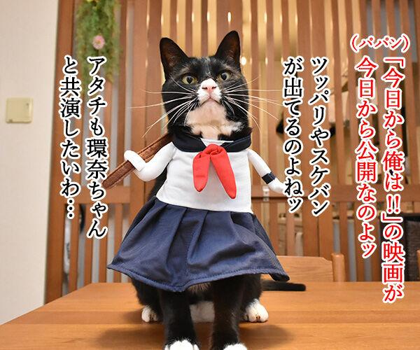 『今日から俺は!!』の三橋って… 猫の写真で4コマ漫画 1コマ目ッ