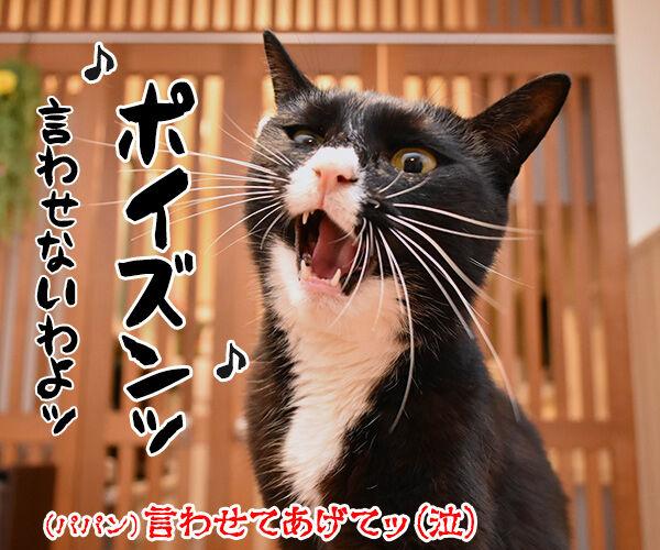 ポイズン 猫の写真で4コマ漫画 4コマ目ッ