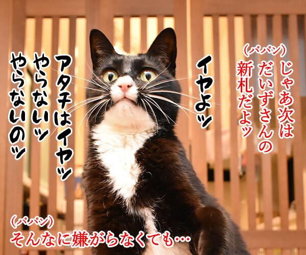 次はボクの新札だね… 猫の写真で4コマ漫画 3コマ目ッ