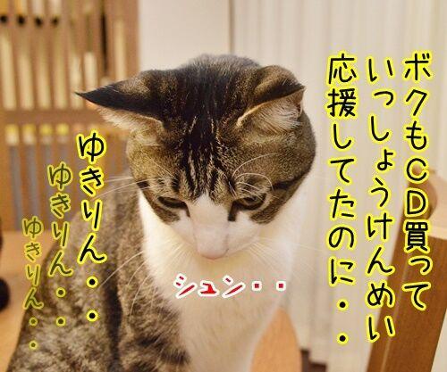 AKB柏○とNEWS手○の熱愛報道 猫の写真で4コマ漫画 3コマ目ッ