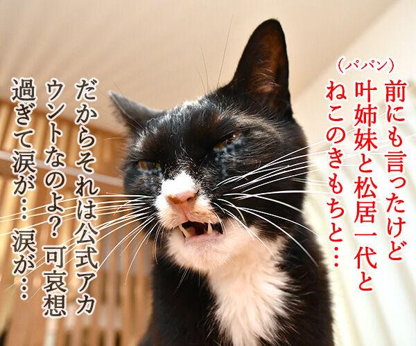 あずだいのLINEスタンプを作ってるのッ 猫の写真で4コマ漫画 4コマ目ッ