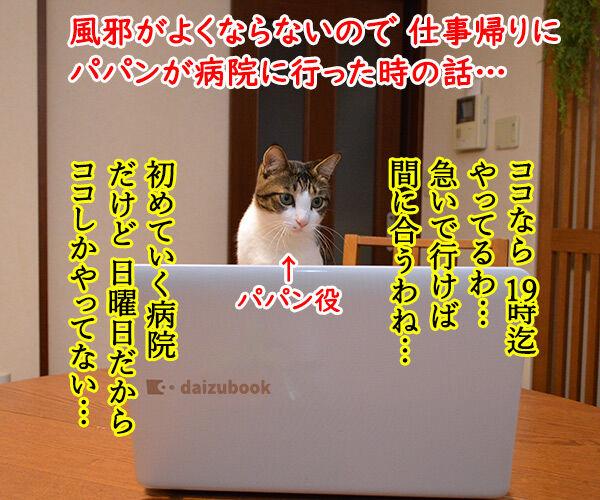 病院にいったけど 猫の写真で4コマ漫画 1コマ目ッ