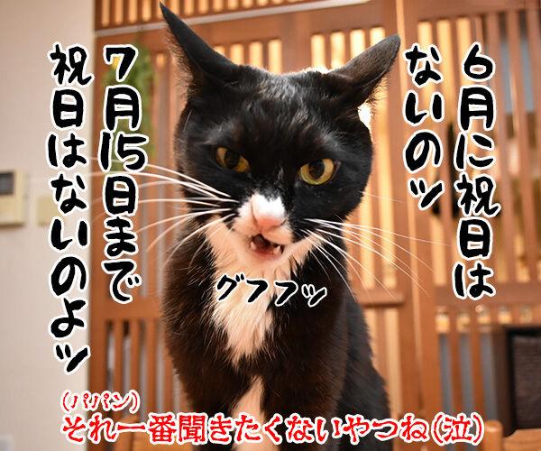 GWが終わっちゃったのよッ 猫の写真で4コマ漫画 4コマ目ッ