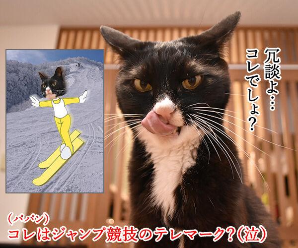 テレワークって最近よく聞くわよねッ 猫の写真で4コマ漫画 2コマ目ッ