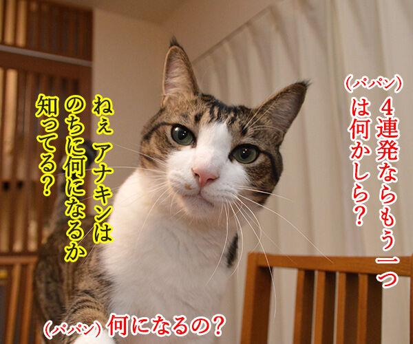 スター・ウォーズでダジャレ4連発ッ!! 猫の写真で4コマ漫画 5コマ目ッ