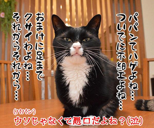 ウソには種類があるんです 猫の写真で4コマ漫画 4コマ目ッ