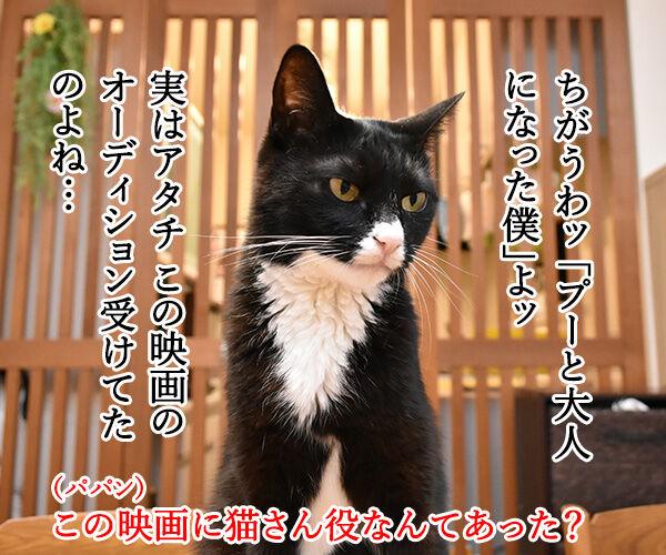 『プーと大人になった僕』を見ようと思うのッ 猫の写真で4コマ漫画 3コマ目ッ
