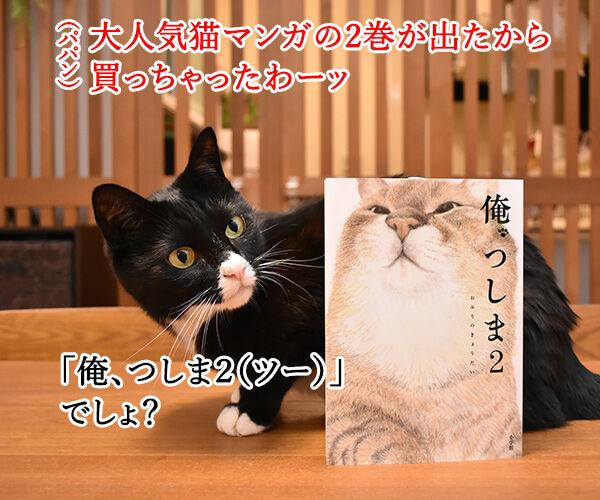 『俺、つしま2(ツー)』の2巻が出たのよッ 猫の写真で4コマ漫画 1コマ目ッ