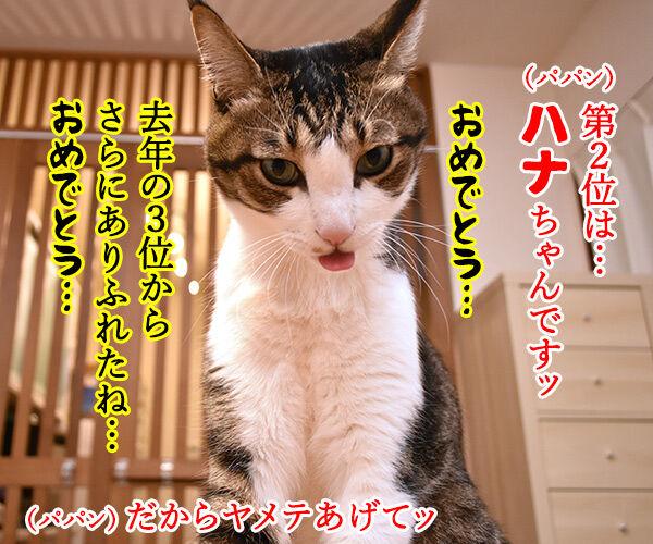 猫の名前ランキング大調査2019 結果発表! 猫の写真で4コマ漫画 2コマ目ッ