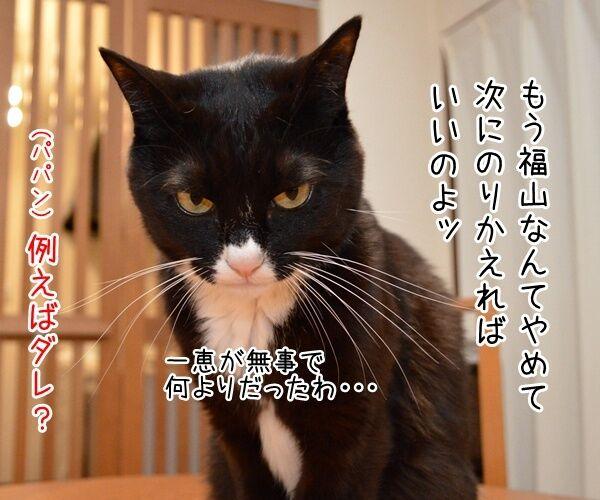 福山雅治宅に不審な女性が侵入ですってッ 猫の写真で4コマ漫画 2コマ目ッ