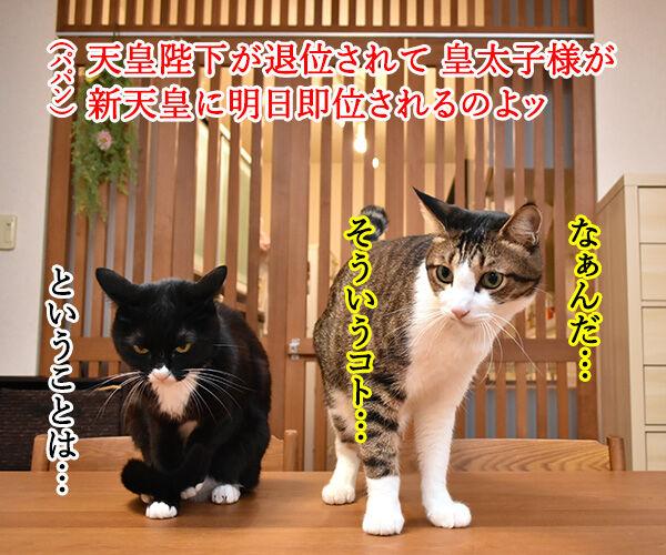 きょうは退位の日なんですってッ 猫の写真で4コマ漫画 3コマ目ッ