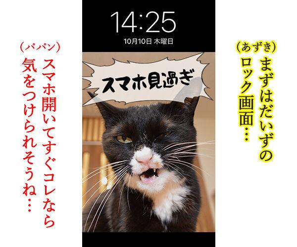 猫に叱られたい人のためのロック画面なのッ 猫の写真で4コマ漫画 2コマ目ッ