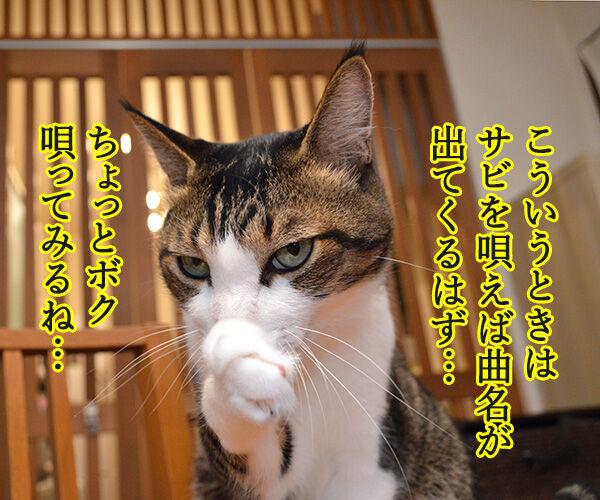 ゲレンデがとけるほど恋したい 猫の写真で4コマ漫画 2コマ目ッ