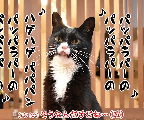 4コマのネタが思いつかない時は唄うのよッ 猫の写真で4コマ漫画 4コマ目ッ
