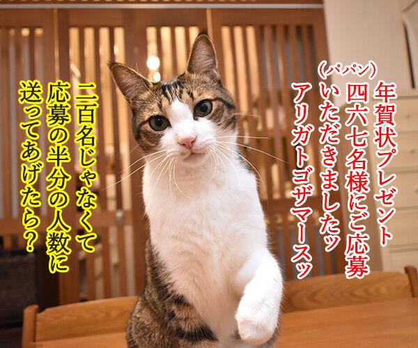 年賀状プレゼント ご応募アリ<br> ガトゴザマシターッ 猫の写真で4コマ漫画 1コマ目ッ
