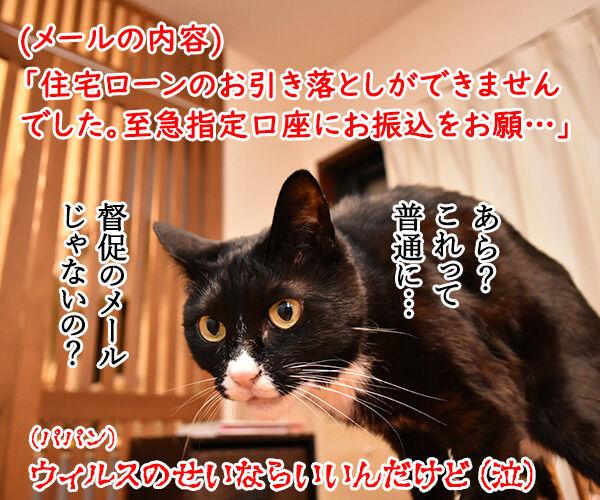ウィスルによる大規模サイバー攻撃があったんですってッ 猫の写真で4コマ漫画 4コマ目ッ
