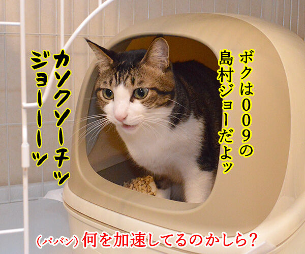 サイボーグ009ごっこするよーッ 猫の写真で4コマ漫画 2コマ目ッ