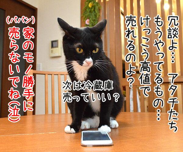 メルカリってご存知? 猫の写真で4コマ漫画 3コマ目ッ