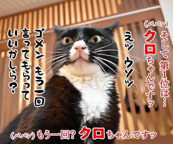 猫の名前ランキング大調査2019 結果発表! 猫の写真で4コマ漫画 3コマ目ッ