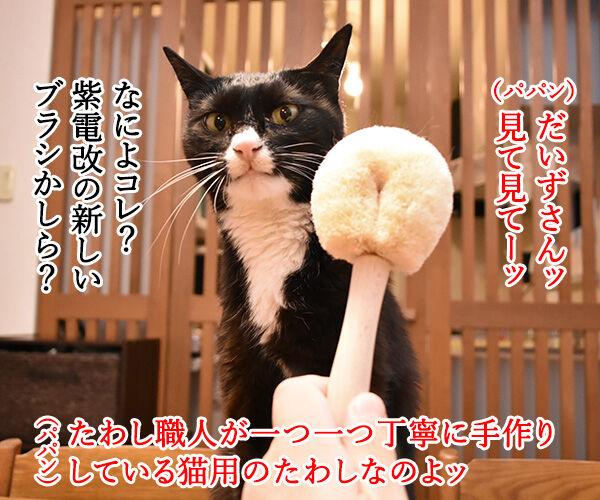 たわし作り一筋50年の職人が作る猫用たわしなのッ 猫の写真で4コマ漫画 1コマ目ッ