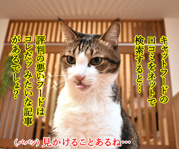 キャットフードを選ぶのは…? 猫の写真で4コマ漫画 1コマ目ッ