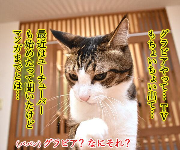 『俺、つしま2(ツー)』の2巻が出たのよッ 猫の写真で4コマ漫画 3コマ目ッ