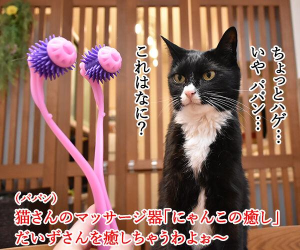 『全身マッサー術 にゃんこの癒し』で癒しちゃうわよッ 猫の写真で4コマ漫画 1コマ目ッ