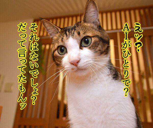 AIの発展はスゴイわね 猫の写真で4コマ漫画 3コマ目ッ