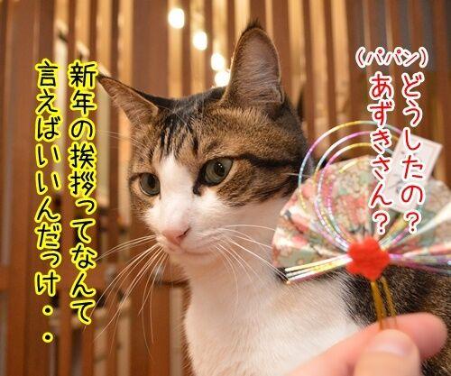 元旦だから新年のご挨拶 猫の写真で4コマ漫画 2コマ目ッ